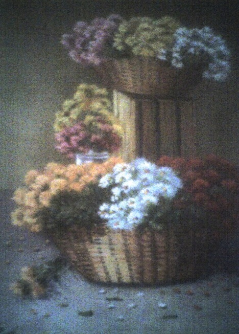 Canasta con flores (Sergio Almendarez)