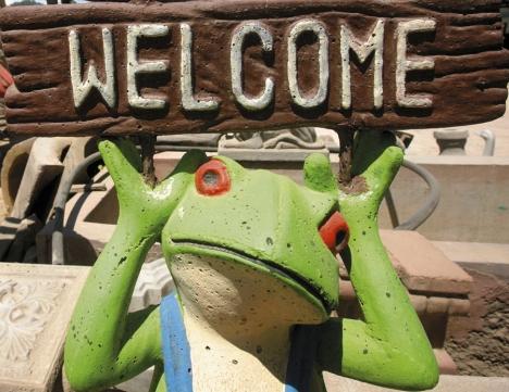 Atractivos diseños de ranas, tortugas, vacas, caballos y lagartos dan colorido al taller de José Cecilio Varela Valle.