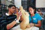 Reabrirá sus puertas Galería Nacional de Arte de Honduras